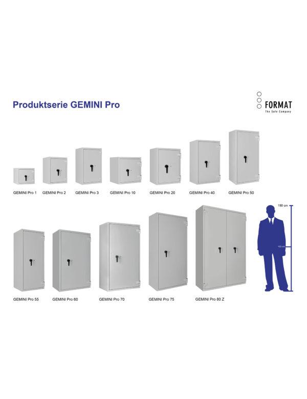 GEMINI-Pro-Produktübersicht