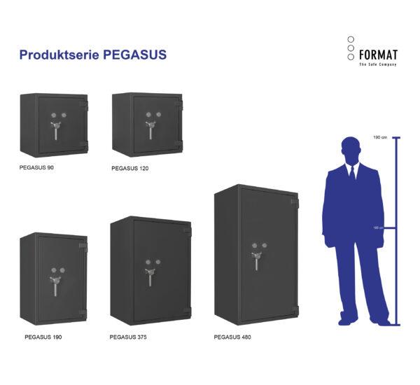 PEGASUS-Produktübersicht